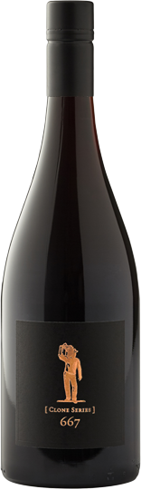 Scheid Vineyards Pinot Noir Clone 667